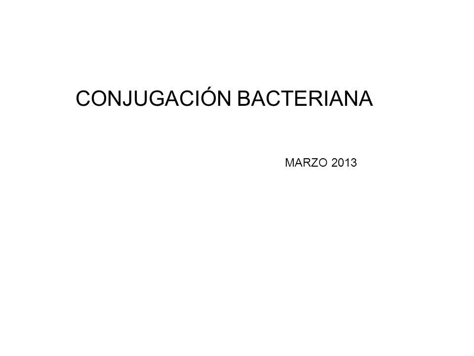 Conjugación La conjugación se ha estudiado ampliamente en Escherichia coli por medio del Factor F que es un plásmido conjugativo y movilizable de 94.5 kb capaz de integrarse al cromosoma bacteriano.