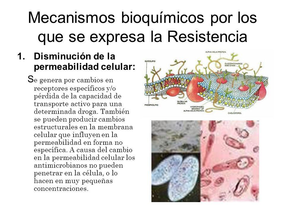 Mecanismos bioquímicos por los que se expresa la Resistencia 1.Disminución de la permeabilidad celular: S e genera por cambios en receptores específic
