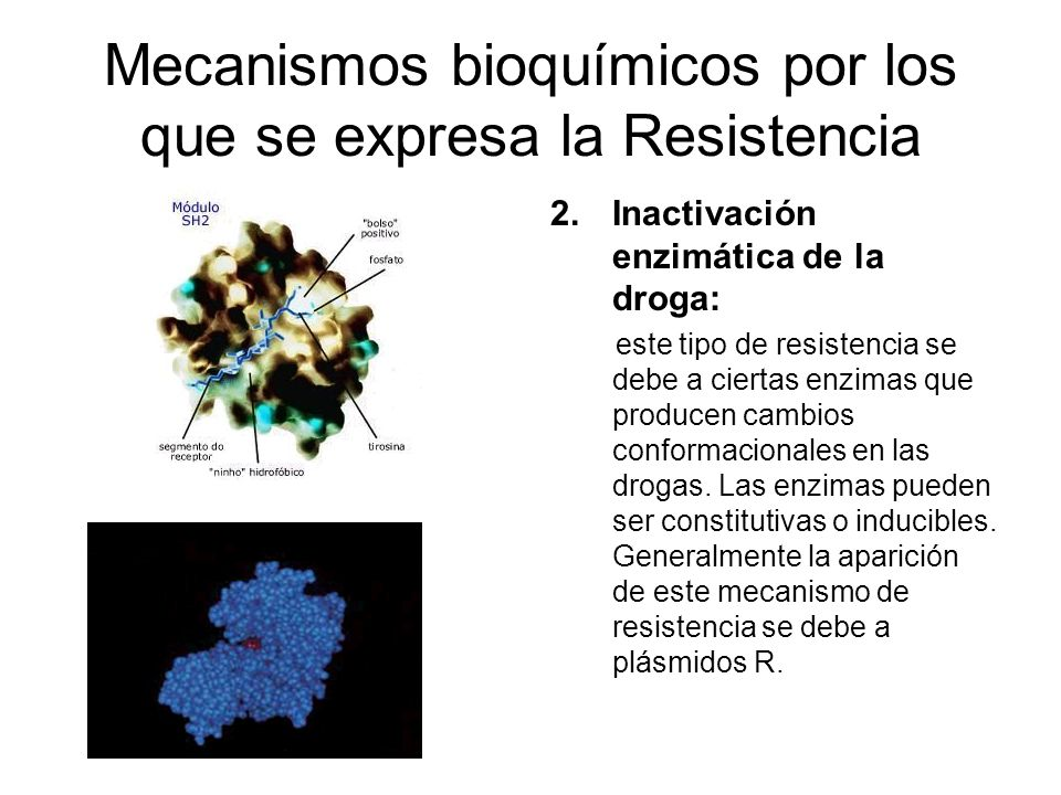 Mecanismos bioquímicos por los que se expresa la Resistencia 2.Inactivación enzimática de la droga: este tipo de resistencia se debe a ciertas enzimas