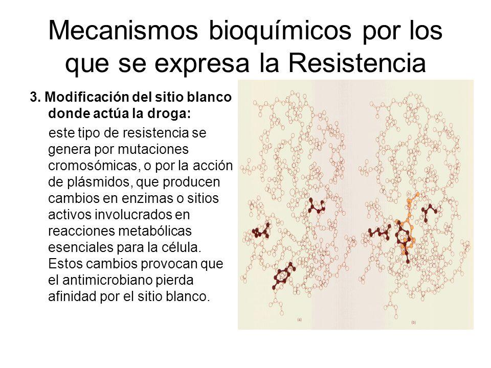 Mecanismos bioquímicos por los que se expresa la Resistencia 3. Modificación del sitio blanco donde actúa la droga: este tipo de resistencia se genera