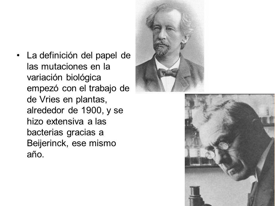 La definición del papel de las mutaciones en la variación biológica empezó con el trabajo de de Vries en plantas, alrededor de 1900, y se hizo extensi
