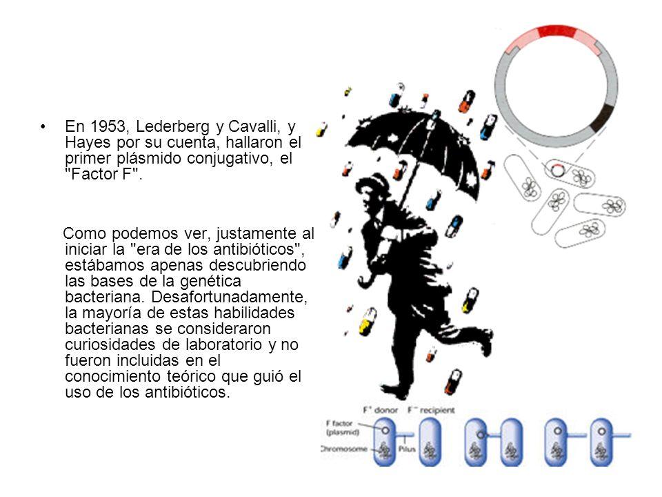 Conjugación La conjugación es un proceso de transferencia de genes entre dos células en contacto.
