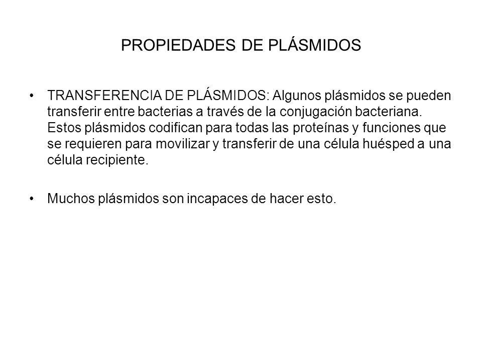 PROPIEDADES DE PLÁSMIDOS TRANSFERENCIA DE PLÁSMIDOS: Algunos plásmidos se pueden transferir entre bacterias a través de la conjugación bacteriana. Est