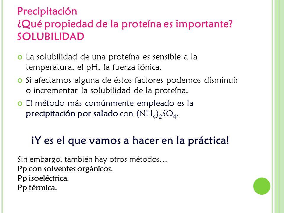 Precipitación ¿Qué propiedad de la proteína es importante? SOLUBILIDAD La solubilidad de una proteína es sensible a la temperatura, el pH, la fuerza i