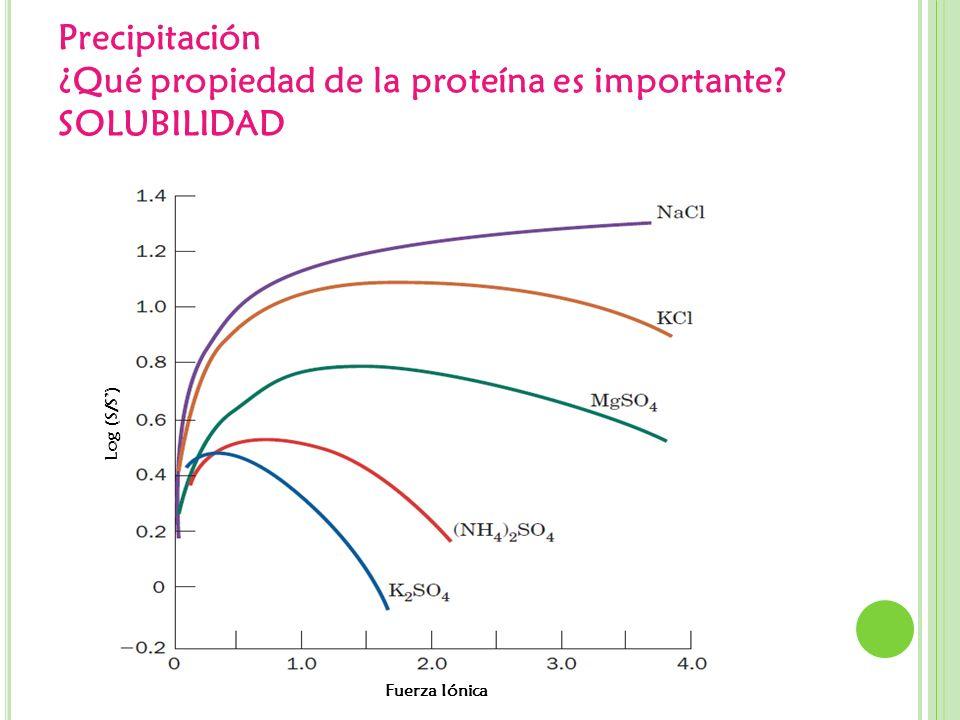 Precipitación ¿Qué propiedad de la proteína es importante? SOLUBILIDAD Fuerza Iónica Log (S/S)