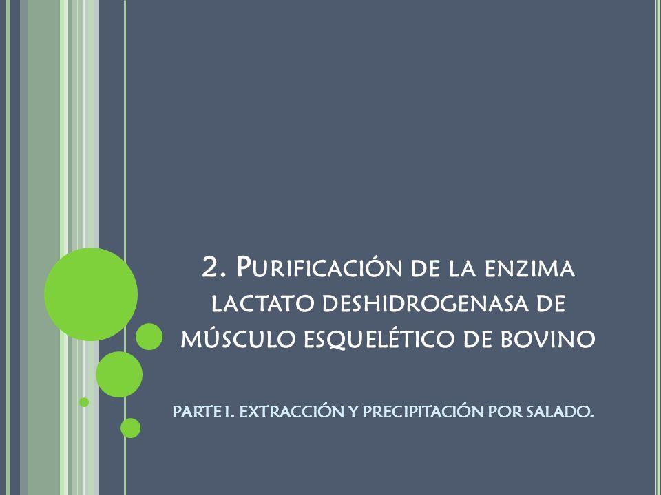 2. P URIFICACIÓN DE LA ENZIMA LACTATO DESHIDROGENASA DE MÚSCULO ESQUELÉTICO DE BOVINO PARTE I. EXTRACCIÓN Y PRECIPITACIÓN POR SALADO.