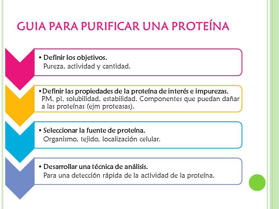 GUIA PARA PURIFICAR UNA PROTEÍNA Definir los objetivos. Pureza, actividad y cantidad. Definir las propiedades de la proteína de interés e impurezas. P