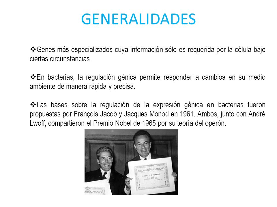 GENERALIDADES Genes más especializados cuya información sólo es requerida por la célula bajo ciertas circunstancias. En bacterias, la regulación génic