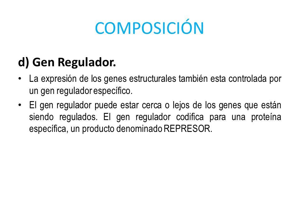COMPOSICIÓN d) Gen Regulador. La expresión de los genes estructurales también esta controlada por un gen regulador específico. El gen regulador puede