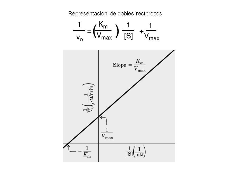 Representación de dobles recíprocos