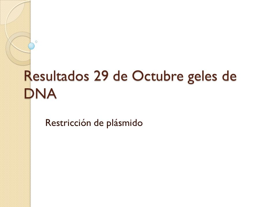 Resultados 29 de Octubre geles de DNA Restricción de plásmido