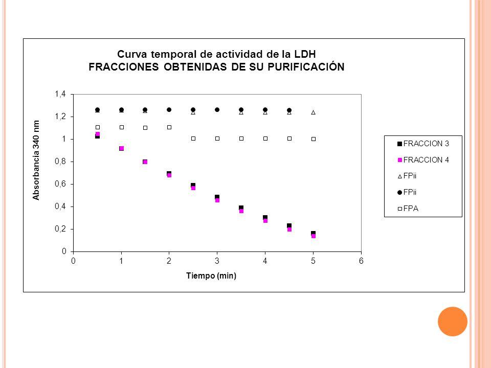 C ÁLCULOS mg proteína F3= 0.01812 mg (lo obtuve al considerar que había 7.25 / L en el concentrado (datos de determinación de proteína de mi extracto) al diluir 1:20 quedaron 0.3625 g/ L, como añadí 50 L entonces la celda tenía 0.01812 mg)