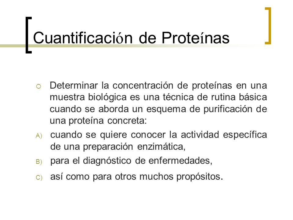 Cuantificaci ó n de Prote í nas Determinar la concentración de proteínas en una muestra biológica es una técnica de rutina básica cuando se aborda un