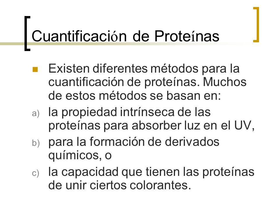 Cuantificaci ó n de Prote í nas Existen diferentes métodos para la cuantificación de proteínas. Muchos de estos métodos se basan en: a) la propiedad i