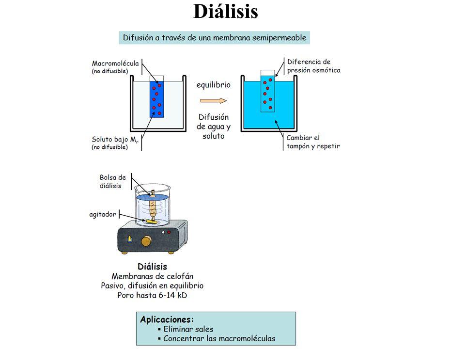 Diálisis