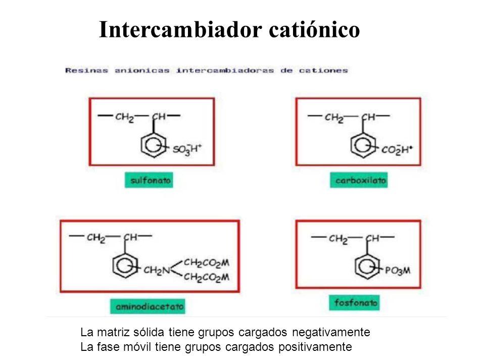 Intercambiador catiónico La matriz sólida tiene grupos cargados negativamente La fase móvil tiene grupos cargados positivamente