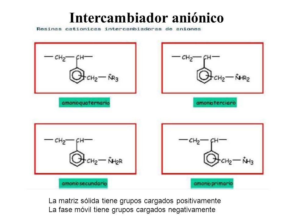Intercambiador aniónico La matriz sólida tiene grupos cargados positivamente La fase móvil tiene grupos cargados negativamente
