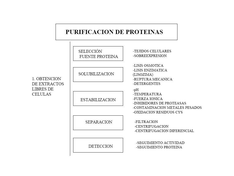 Se utiliza principalmente para separar una proteína de otros contaminantes siempre que las diferencias entre las cargas sean suficientemente grandes.