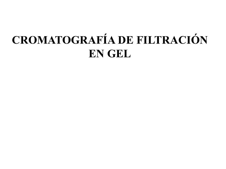 FUNDAMENTO TEÓRICO La cromatografía de exclusión o filtración en gel es una clase de cromatografía sólido-líquido que permite la separación de moléculas en función de su TAMAÑO.