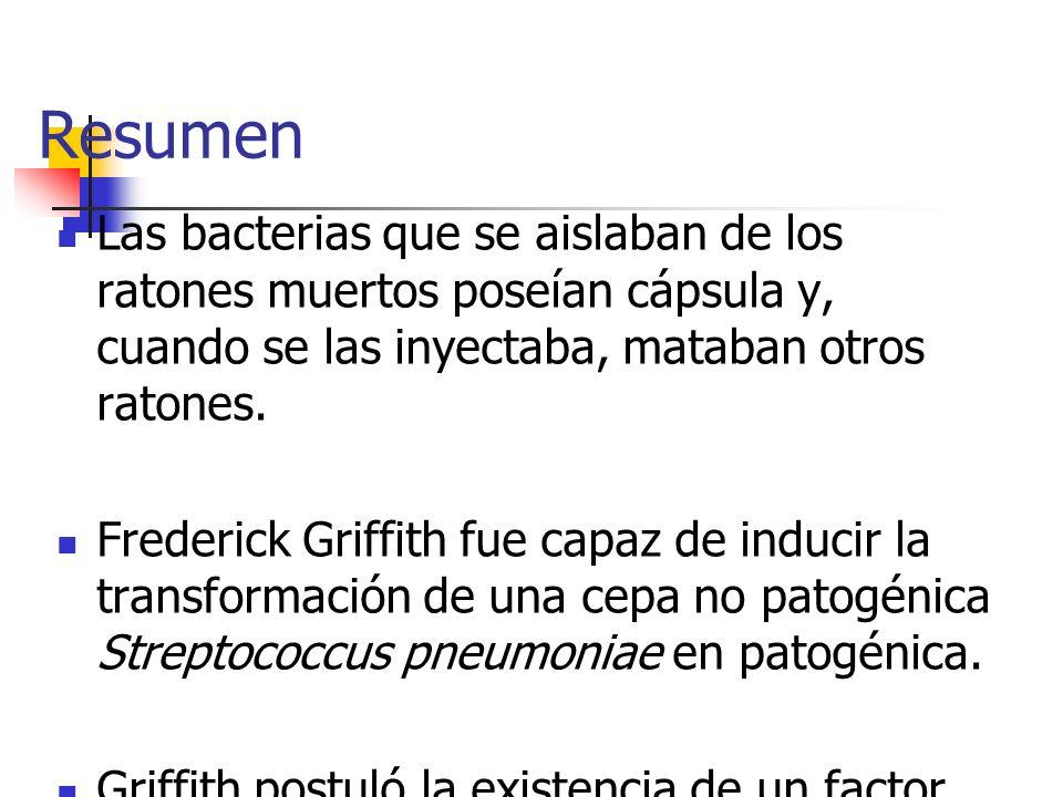 Resumen Las bacterias que se aislaban de los ratones muertos poseían cápsula y, cuando se las inyectaba, mataban otros ratones. Frederick Griffith fue
