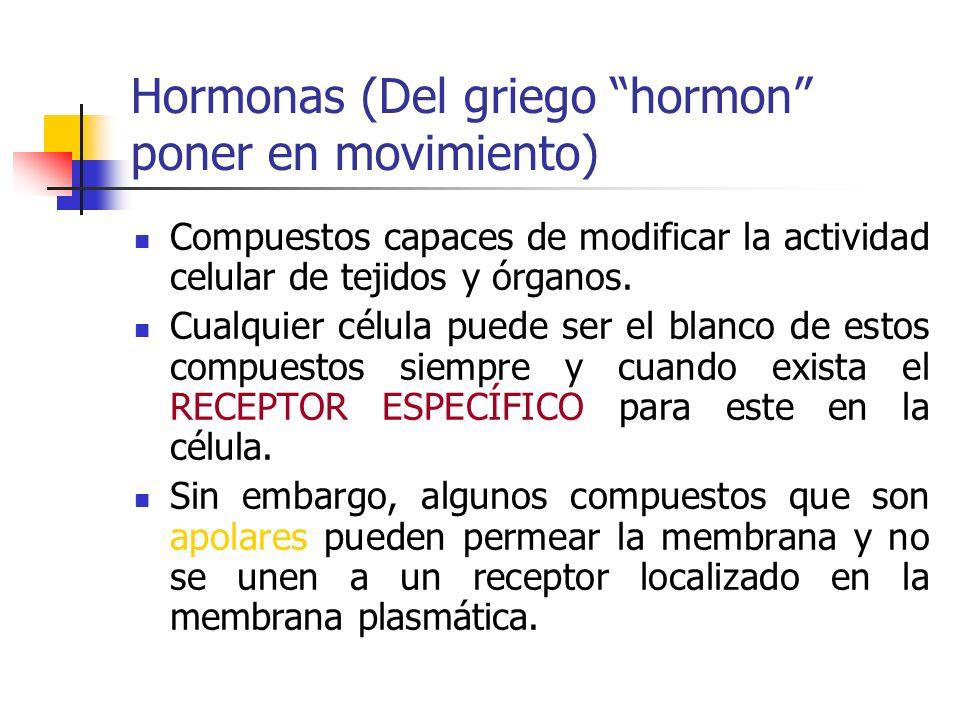 Hormonas (Del griego hormon poner en movimiento) Compuestos capaces de modificar la actividad celular de tejidos y órganos. Cualquier célula puede ser