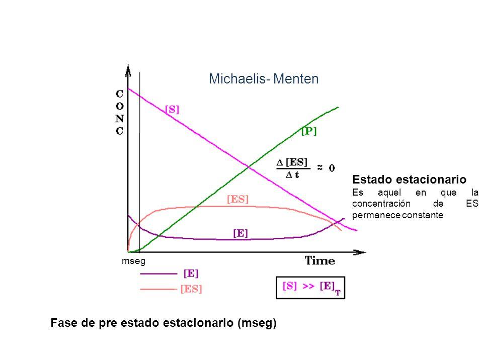 Michaelis- Menten Estado estacionario Es aquel en que la concentración de ES permanece constante mseg Fase de pre estado estacionario (mseg)