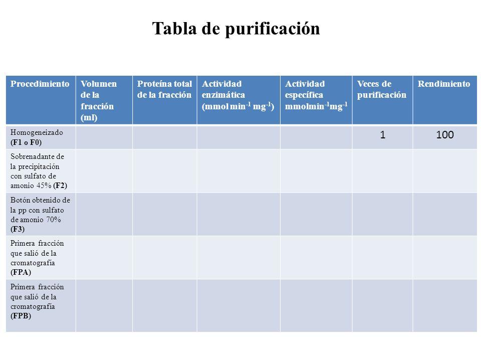 ProcedimientoVolumen de la fracción (ml) Proteína total de la fracción Actividad enzimática (mmol min -1 mg -1 ) Actividad específica mmolmin -1 mg -1
