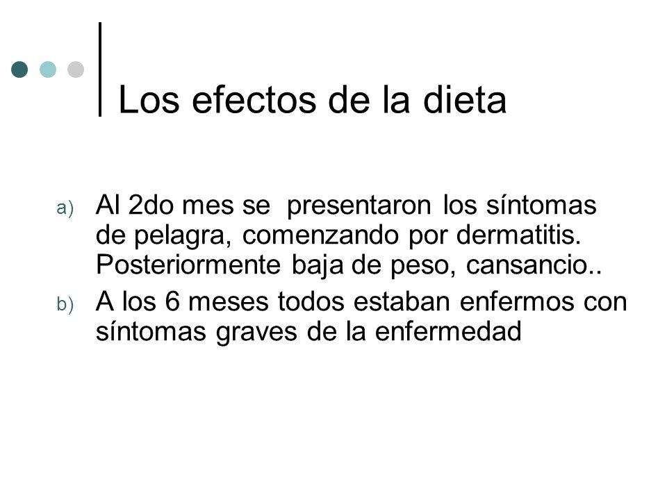 Los efectos de la dieta a) Al 2do mes se presentaron los síntomas de pelagra, comenzando por dermatitis.