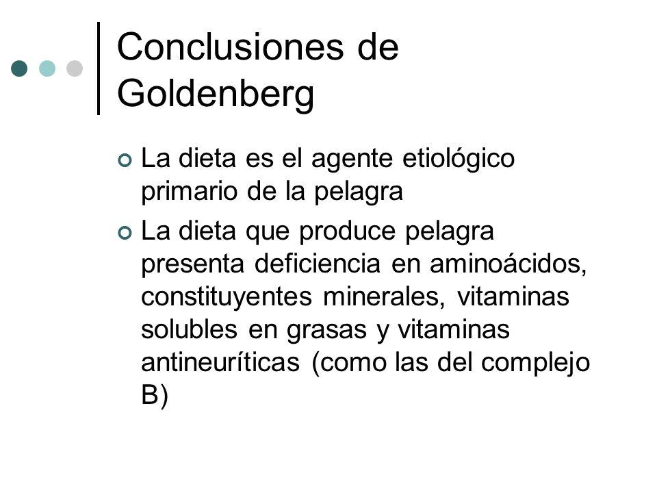 Conclusiones de Goldenberg La dieta es el agente etiológico primario de la pelagra La dieta que produce pelagra presenta deficiencia en aminoácidos, constituyentes minerales, vitaminas solubles en grasas y vitaminas antineuríticas (como las del complejo B)