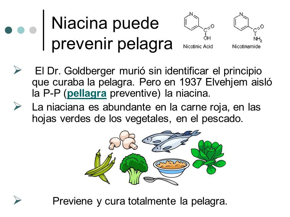 Niacina puede prevenir pelagra El Dr.