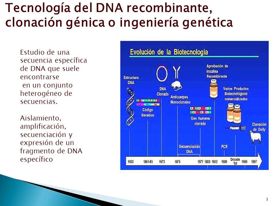 3 Tecnología del DNA recombinante, clonación génica o ingeniería genética Estudio de una secuencia específica de DNA que suele encontrarse en un conju