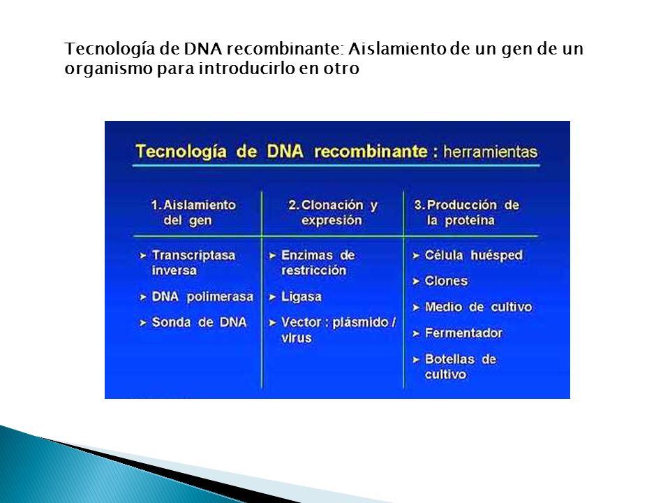 Tecnología de DNA recombinante: Aislamiento de un gen de un organismo para introducirlo en otro