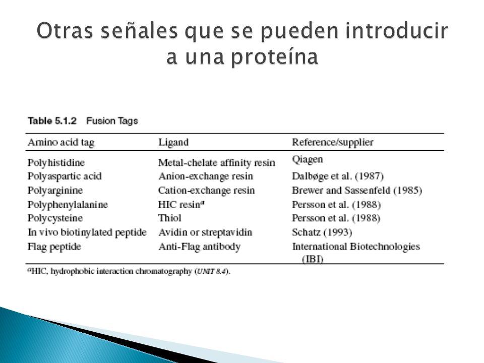 9 Clonación del DNA DNA foráneo (secuencia que se desea clonar) Vector de clonación (vehículo) Organismo huésped (E.