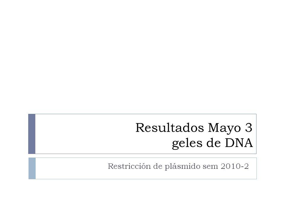Resultados Mayo 3 geles de DNA Restricción de plásmido sem 2010-2