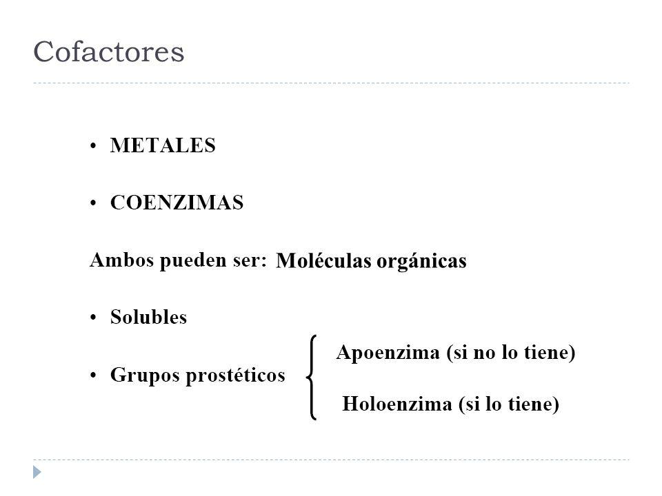 Moléculas orgánicas Cofactores