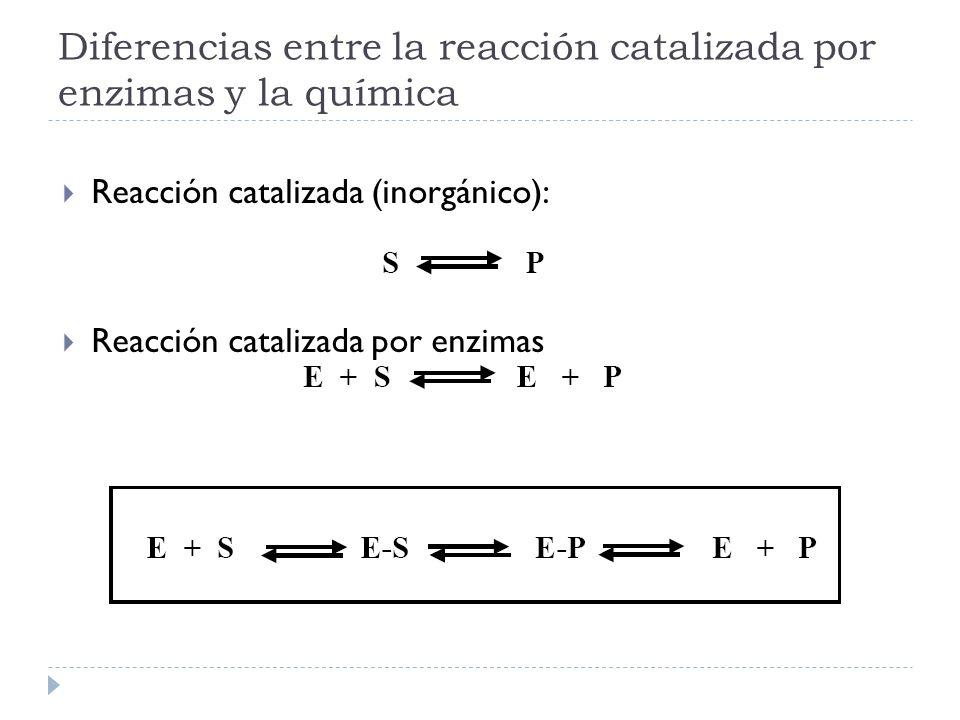 Diferencias entre la reacción catalizada por enzimas y la química Reacción catalizada (inorgánico): Reacción catalizada por enzimas