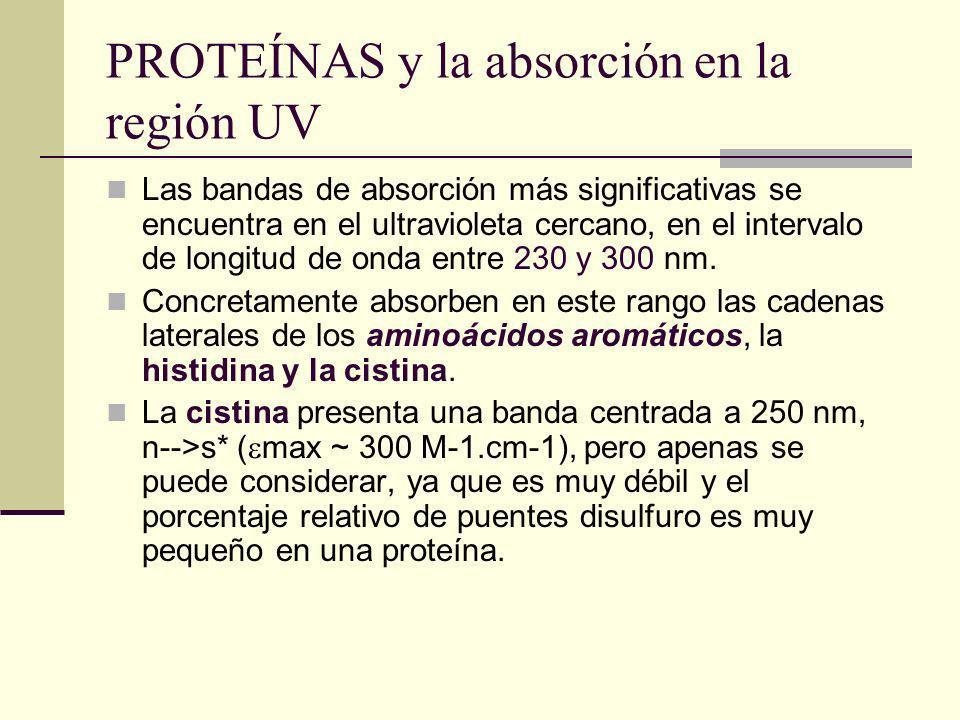 PROTEÍNAS y la absorción en la región UV Las bandas de absorción más significativas se encuentra en el ultravioleta cercano, en el intervalo de longitud de onda entre 230 y 300 nm.