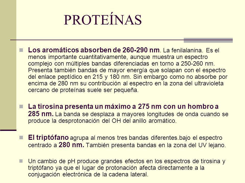 PROTEÍNAS Los aromáticos absorben de 260-290 nm. La fenilalanina. Es el menos importante cuantitativamente, aunque muestra un espectro complejo con mú