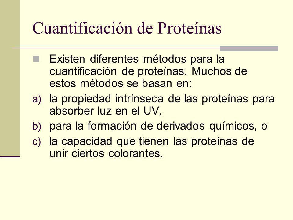 Cuantificación de Proteínas Existen diferentes métodos para la cuantificación de proteínas. Muchos de estos métodos se basan en: a) la propiedad intrí