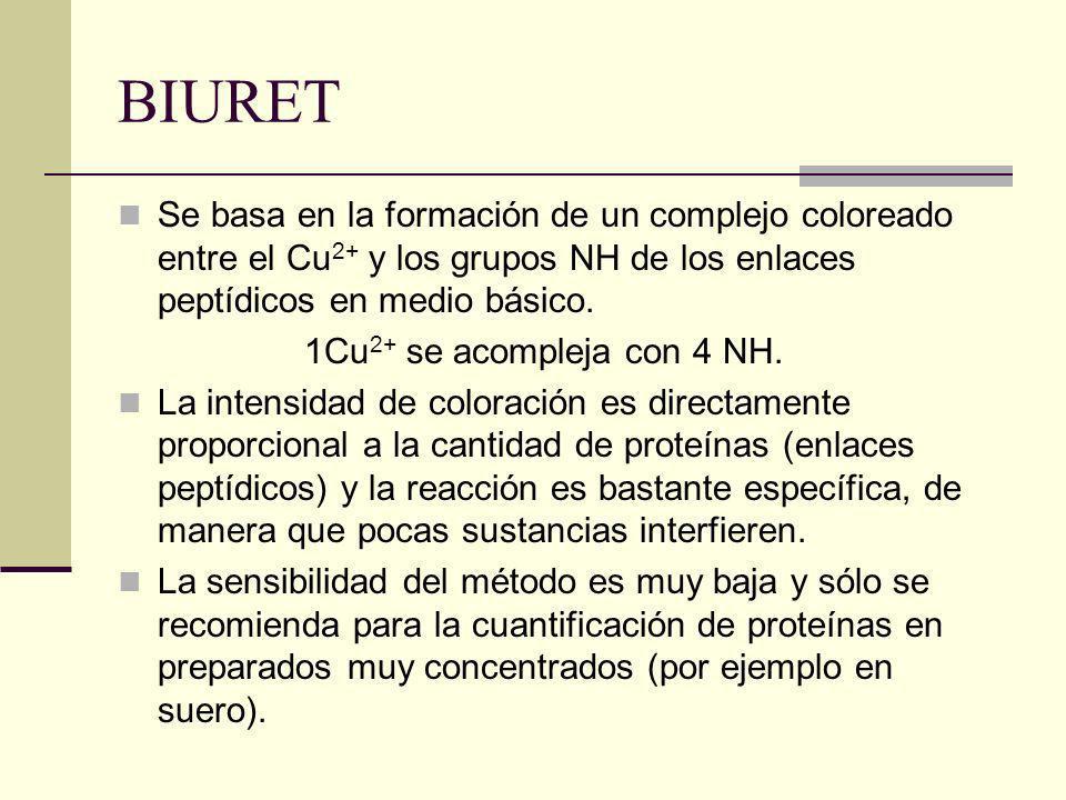 BIURET Se basa en la formación de un complejo coloreado entre el Cu 2+ y los grupos NH de los enlaces peptídicos en medio básico. 1Cu 2+ se acompleja