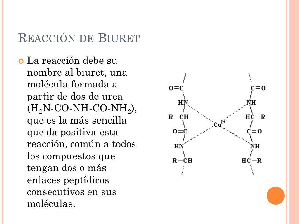 R EACCIÓN DE B IURET La reacción debe su nombre al biuret, una molécula formada a partir de dos de urea (H 2 N-CO-NH-CO-NH 2 ), que es la más sencilla