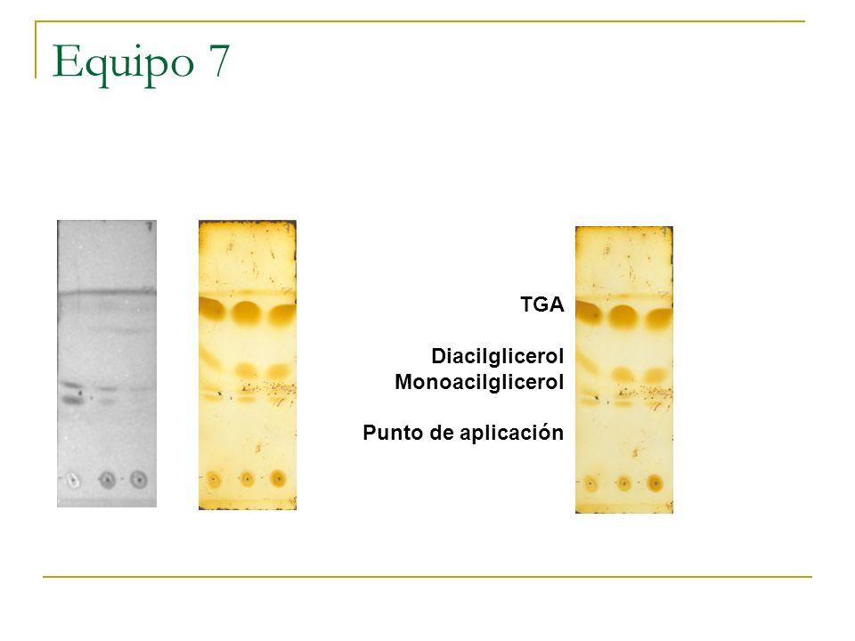 Equipo 7 TGA Diacilglicerol Monoacilglicerol Punto de aplicación