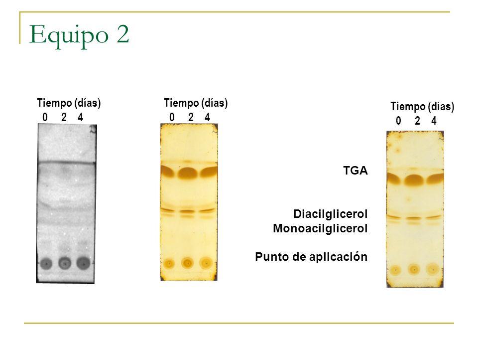 Equipo 2 TGA Diacilglicerol Monoacilglicerol Punto de aplicación Tiempo (días) 0 2 4 Tiempo (días) 0 2 4 Tiempo (días) 0 2 4