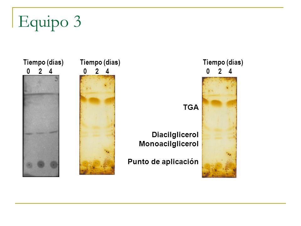 Equipo 3 TGA Diacilglicerol Monoacilglicerol Punto de aplicación Tiempo (días) 0 2 4 Tiempo (días) 0 2 4 Tiempo (días) 0 2 4
