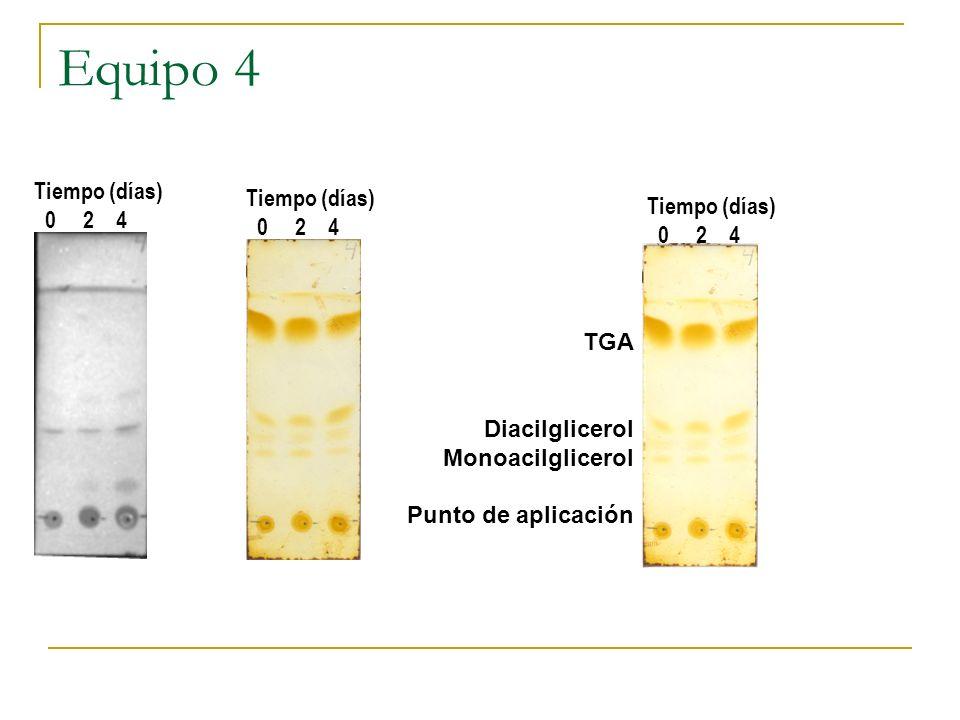 Equipo 4 TGA Diacilglicerol Monoacilglicerol Punto de aplicación Tiempo (días) 0 2 4 Tiempo (días) 0 2 4 Tiempo (días) 0 2 4