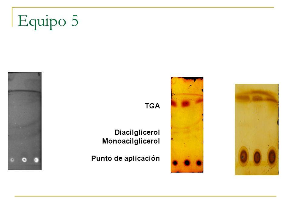 Equipo 5 TGA Diacilglicerol Monoacilglicerol Punto de aplicación