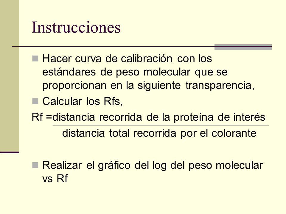 Instrucciones Hacer curva de calibración con los estándares de peso molecular que se proporcionan en la siguiente transparencia, Calcular los Rfs, Rf