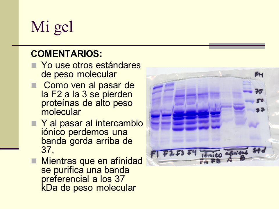 Mi gel COMENTARIOS: Yo use otros estándares de peso molecular Como ven al pasar de la F2 a la 3 se pierden proteínas de alto peso molecular Y al pasar