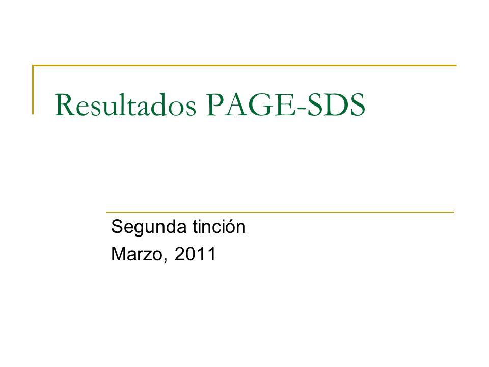 Resultados PAGE-SDS Segunda tinción Marzo, 2011