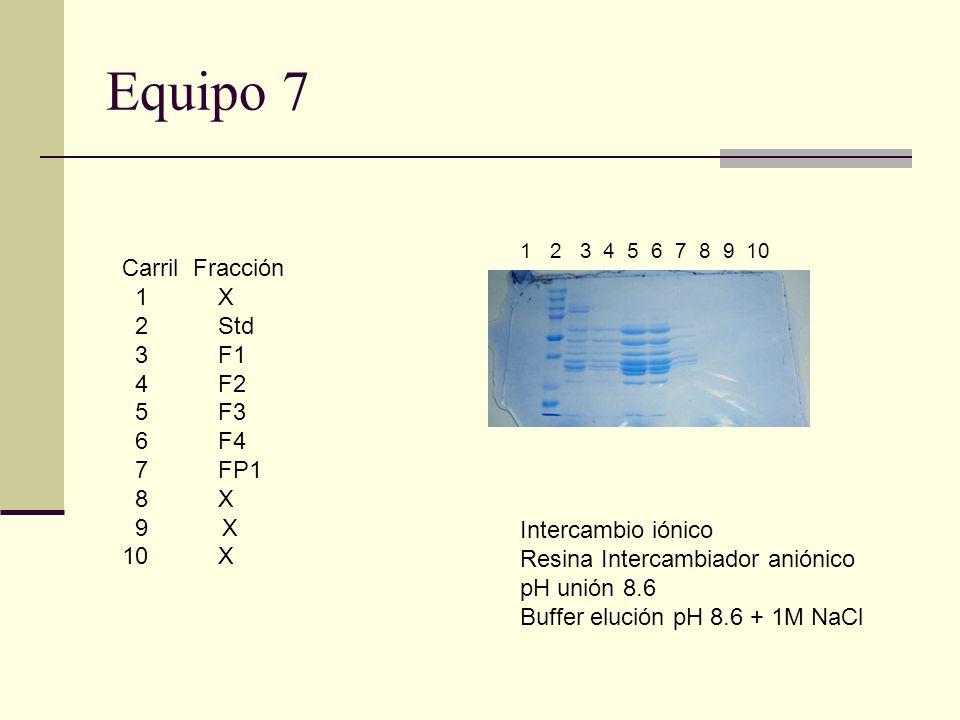 Equipo 7 Carril Fracción 1 X 2 Std 3F1 4F2 5F3 6F4 7FP1 8X 9 X 10 X 1 2 3 4 5 6 7 8 9 10 Intercambio iónico Resina Intercambiador aniónico pH unión 8.